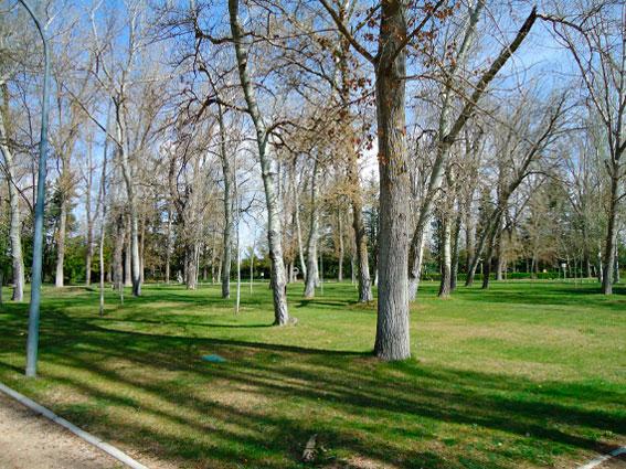 Parque La Arboleda Almazán